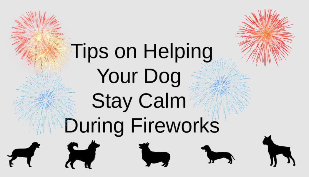 Tips on Helping Your Dog Stay Calm DuringFireworks