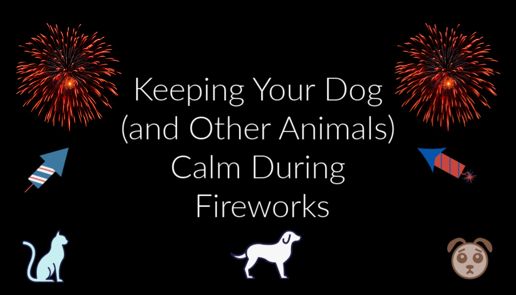 Keeping Your Dog (and Other Animals) Calm DuringFireworks