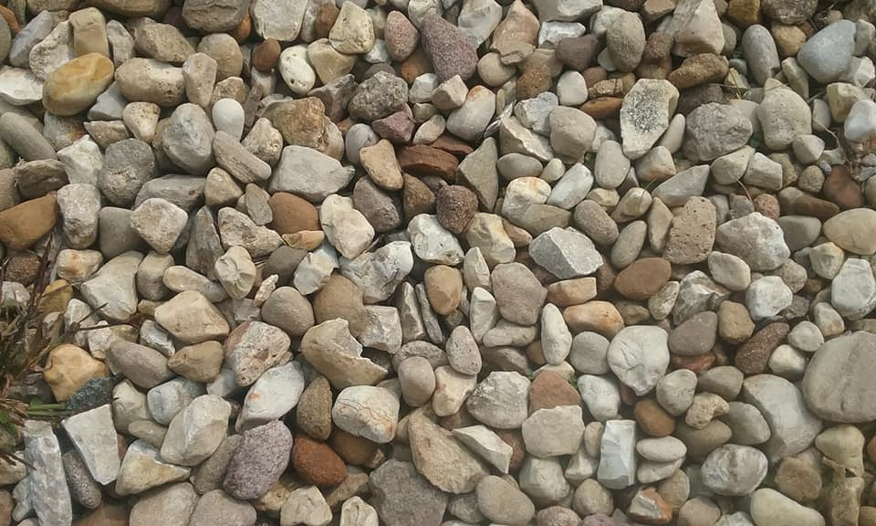 National Collecting RocksDay