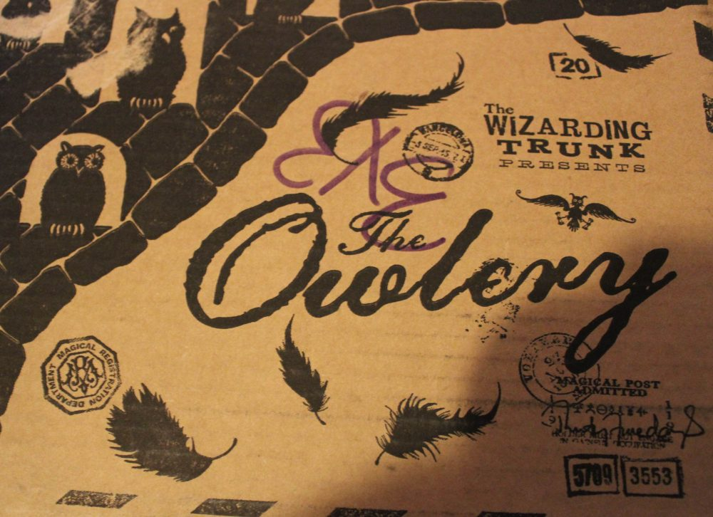 Rebecca Reviewed It: The Wizarding Trunk Other World Beast & Arithmancy Crate