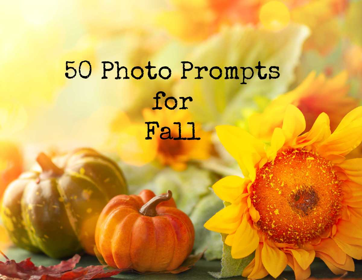 50 Photo Prompts forFall